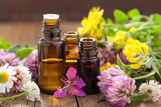 Phytotherapie | Médecine naturelle